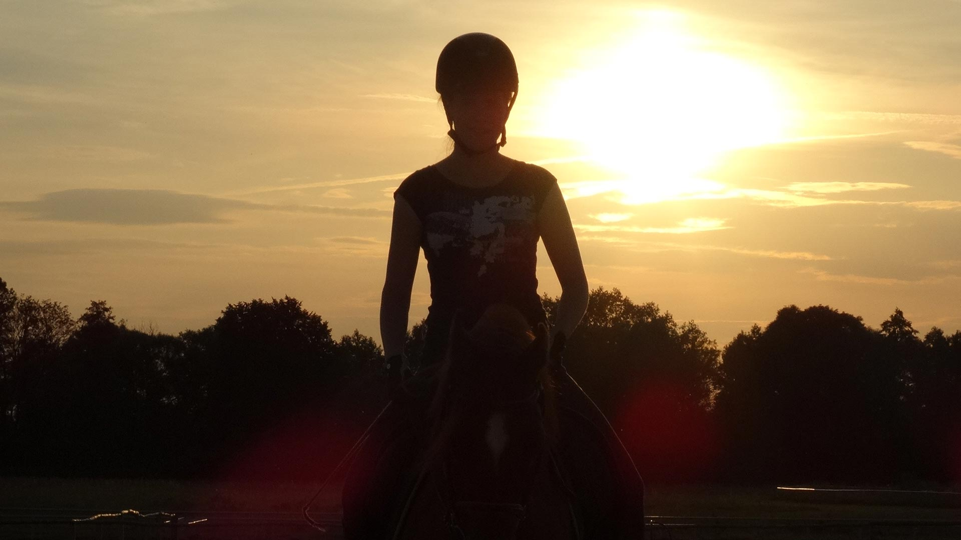 Konie-zawody_konne-HARMONY_FARM-Szewce